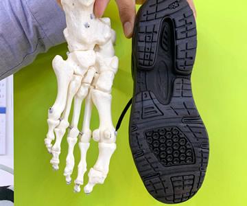 足の骨格と靴のラインが同じシューズ